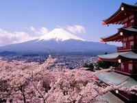 14 cách để đi du lịch Nhật Bản giá rẻ