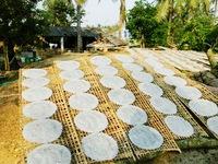 Bình Định: Bánh tráng vào mùa làm hàng Tết
