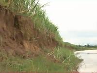 Kon Tum: Sạt lở sông Đăk Bla đe dọa đời sống người dân