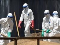 Mỹ đề nghị IMF xóa nợ cho các quốc gia ổ dịch Ebola
