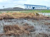 Việt Nam - Đức đẩy mạnh hợp tác xử lý hóa chất tồn lưu trong đất