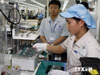 Việt Nam - Brazil lập kỷ lục mới về trao đổi thương mại