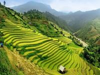 Việt Nam góp mặt trong danh sách 20 điểm đến kỳ diệu