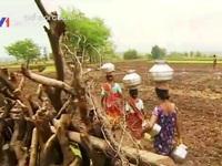 Thân phận những người vợ nước tại Ấn Độ