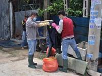 Vụ thảm sát ở Bình Phước: Tìm ra vật chứng gồm dao và súng