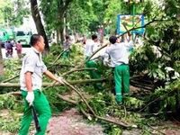"""Hà Nội: Hơn 2.000 người tham gia khắc phục hậu quả """"siêu dông"""""""