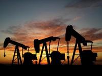 Giá dầu đang tăng trở lại