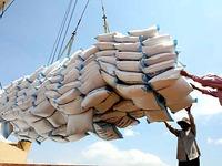 Xuất khẩu gạo sang châu Phi, Tây Á tăng mạnh