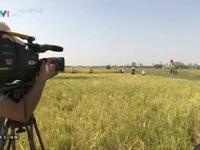 Phim Gia phả của đất: Vất vả những cảnh quay dưới trời nắng gắt