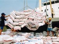 Giá gạo xuất khẩu tăng mạnh