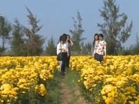 """Sức hút bình yên từ vùng đất """"Hoa vàng, cỏ xanh"""""""