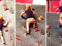 Cháu nhỏ 8 tháng tuổi biết... leo vách tường