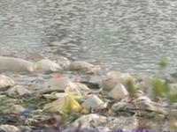 Bắc Ninh: Bất cập trong việc xử lý nước thải ở làng bún Khắc Niệm