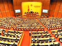 Quốc hội thảo luận dự thảo Bộ luật hình sự (sửa đổi)