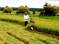Kêu gọi đầu tư nông nghiệp, nông thôn