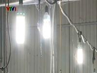 Người dân nông thôn trăn trở trước giá điện tăng