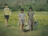 Diện mạo điện ảnh Việt (Kỳ 2): Ngọn lửa mang tên Tôi thấy hoa vàng trên cỏ xanh