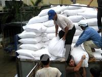 Hỗ trợ Đăk Lăk gần 500 tấn gạo cứu đói