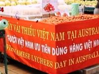Ngày vải thiều Việt Nam tại Australia