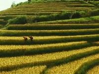 Quảng bá du lịch Việt Nam trên kênh Travel Channel