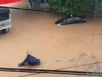 Quảng Ninh: Khẩn trương khắc phục hậu quả mưa lũ