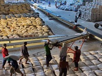Quý I/2015, sản lượng xuất khẩu gạo sụt giảm mạnh