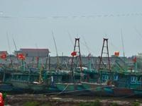 Cơn bão số 3: Nam Định gấp rút công tác di dời dân