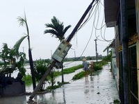 Thái Bình thiệt hại, huyện đảo Cát Hải bị cô lập sau bão số 1