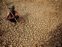 Nắng nóng kỷ lục tại Ấn Độ, nhiệt độ chạm mức 51 độ C