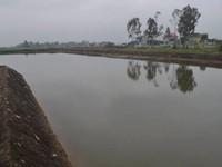 Bắc Giang: Hai vụ đuối nước thương tâm, 6 em nhỏ thiệt mạng