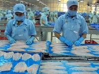 Hoa Kỳ chính thức kiểm tra cá tra, basa Việt Nam từ ngày 15/4