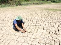 Lúng túng trong cung cấp nước sinh hoạt vùng hạn hán và xâm nhập mặn