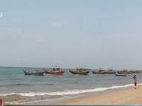 Giới khoa học khẳng định vệt nước đỏ ở vùng biển Quảng Bình là thủy triều đỏ