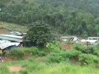 Bắt giam thêm 11 đối tượng trong vụ phá rừng thủy điện Đồng Nai 5
