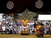 Lễ hội mùa Xuân của các võ sĩ Sumo Nhật Bản