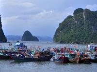 Chiều tối nay, bão số 1 ảnh hưởng trực tiếp từ Quảng Ninh - Thanh Hóa