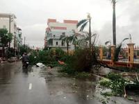 Bão số 1 đổ bộ vào Nam Định, gây mất điện trên diện rộng