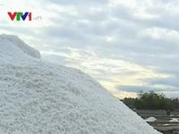 Khánh Hòa còn tồn hơn 34.000 tấn muối
