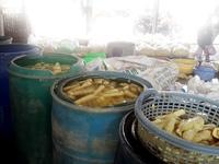 Phát hiện hàng loạt cơ sở nhuộm măng tươi bằng hóa chất