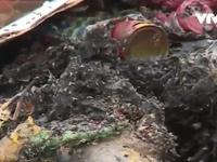 Bất cập trong quy hoạch xử lý rác thải ở Đồng Nai