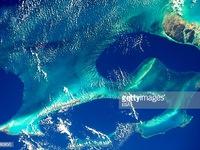 Rạn san hô đang phát triển bền vững dưới đáy biển