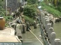 Tiền Giang: Sạt lở nghiêm trọng trên tuyến kênh 28