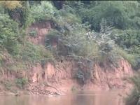 Quảng Nam: Nỗi lo sạt lở mùa mưa bão