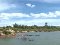 Quảng Trị kiểm tra sạt lở sông Thạch Hãn