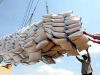 Xuất khẩu gạo quý II/2016 giảm mạnh