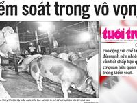 Điểm báo sáng 21/3: Chất cấm trong thịt lợn gấp... 5.000 lần mức cho phép