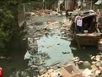 Sông Sài Gòn đang trong cơn hấp hối