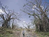 Biến đổi khí hậu trong con mắt của trẻ thơ