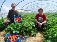 Quan tâm đến sức khỏe, người Bỉ ngày càng chuộng rau bio