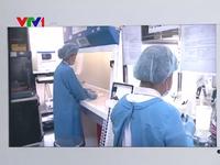 Bác thông tin Khánh Hòa có 4 bệnh nhân dương tính với virus Zika
